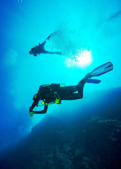 Diving in Bali to make the best and worthy trip