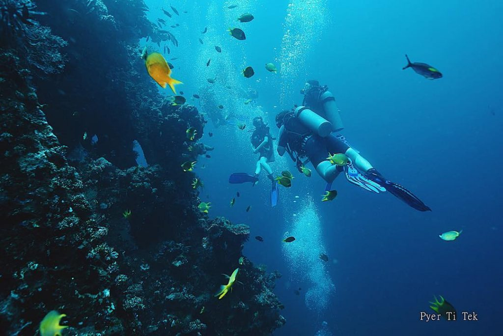 First Time Having Wreck Diving in Bali? Here's What You Need to Do